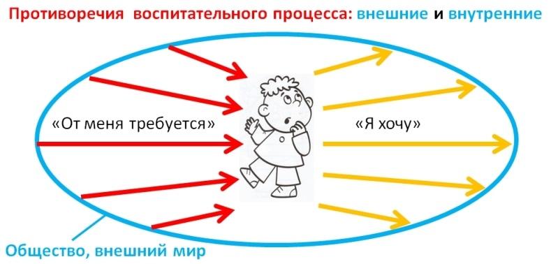 Закономерности воспитания подласый